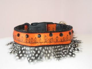 Dog_collar_aromatherapy