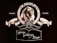 Mgm_lion
