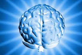 Brain great