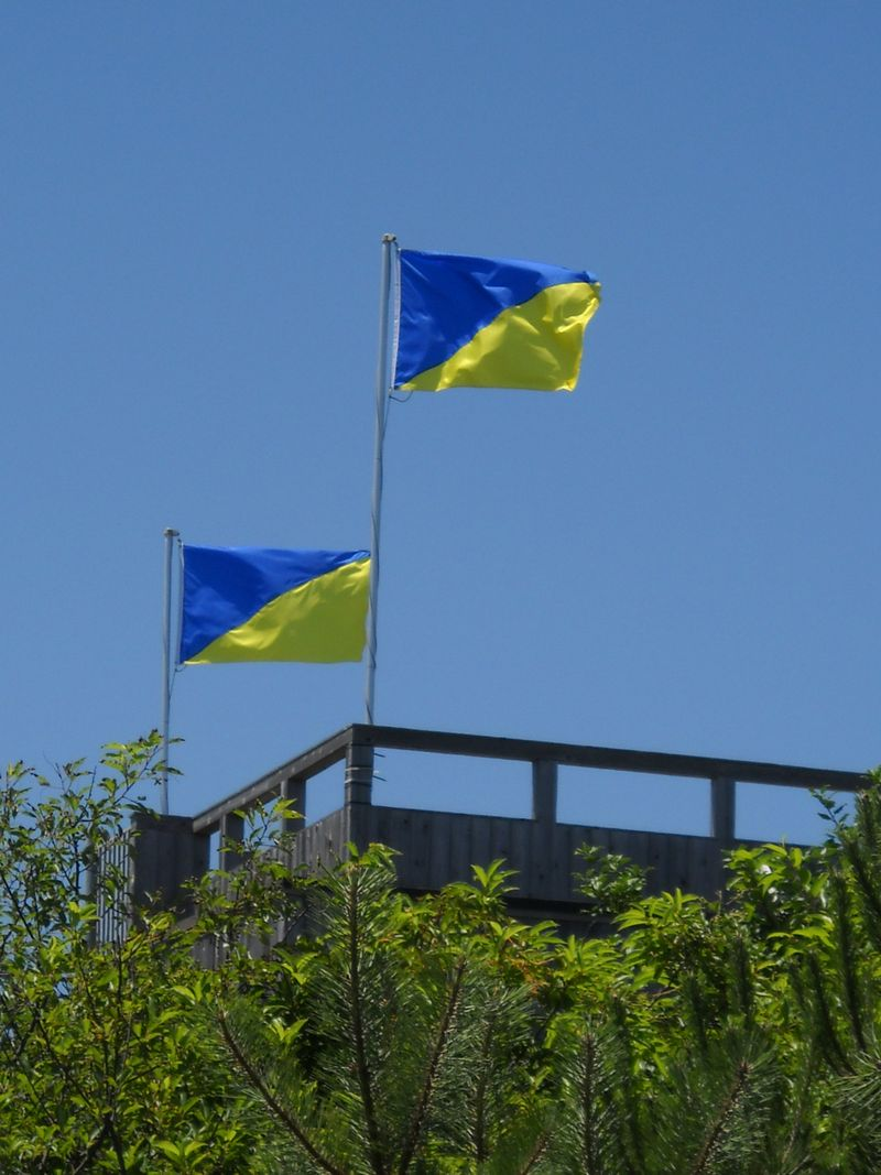 Flags_over_house1_fireisland_pines