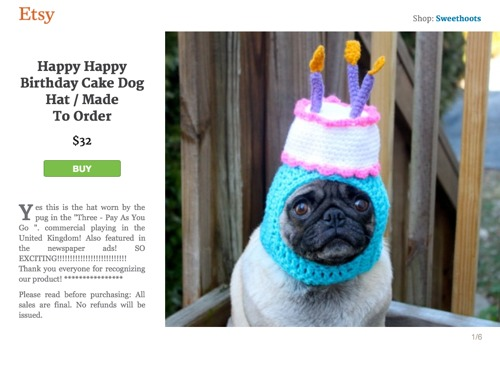 Happy Birthday Pet Hats From Esty