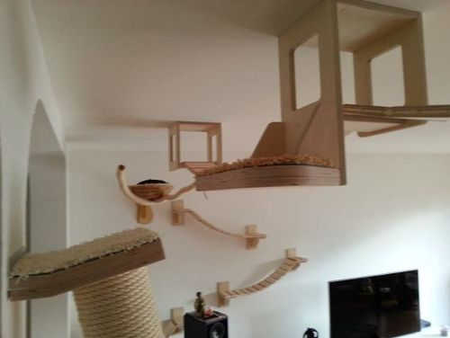 Maybe Its Time To Try These Innovative And Actually Fairly Interesting Beautiful Wall Ceiling Mounted Cat Climbing Furniture