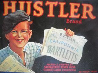 Hustler.fruitlabel