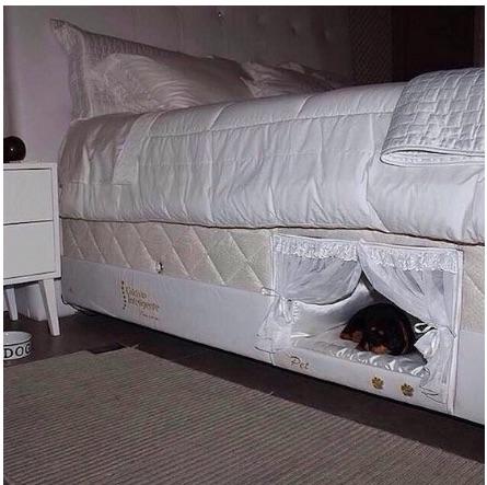 Cat bed4