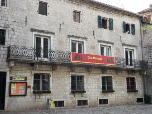 Cats_Museum_Cattaro_(Kotor)