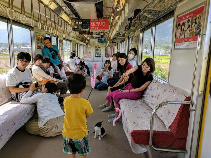 Japan cat train