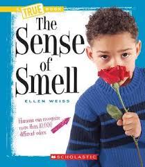 Sense.of.smell