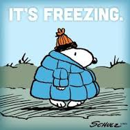 Cold weather - snoopy