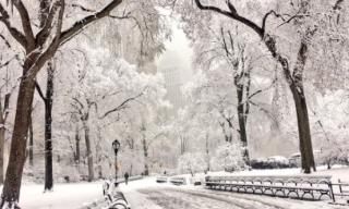 Spring-snowstorm-CentralPark-NYC-02April2018