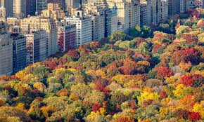 New york in fall 2020